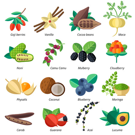 Set of superfood fruits, vegetables, berries, nuts and seeds. Vector collection of healthy detox natural products. Flat design organic food ingredients.