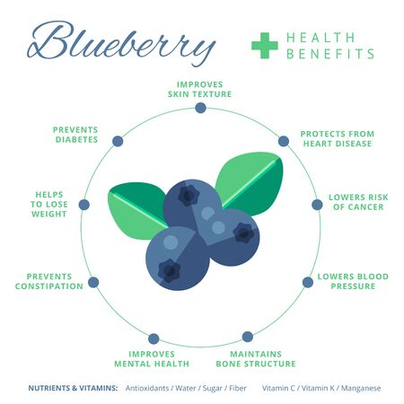 Blueberry health benefits and nutrition infographics. Superfood Vaccinium berry nutrients and vitamins information. Healthy detox natural product info. Flat vector organic food icon.