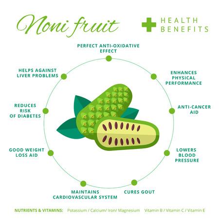 ノニ果実の健康と栄養のインフォ グラフィック。Superfood モリンダ ベリーやインド桑の栄養素とビタミンの情報です。健康的なデトックス自然製品