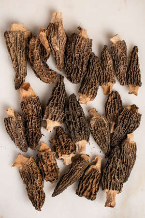 Dried morels are laid out on a light background. Delicacies of Italian cuisine.