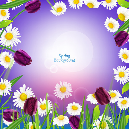 blinking: The illustration of beautiful grass with camomiles and tulips. Vector image. Illustration