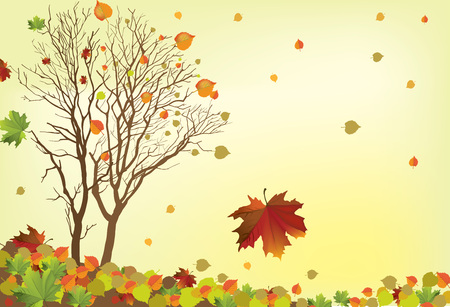 The illustration of autumn background with fallen leaves Stock Vector - 25206262
