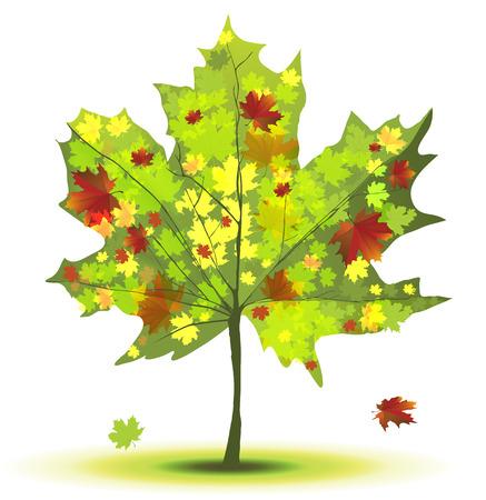緑と赤の色彩で装飾カエデの木
