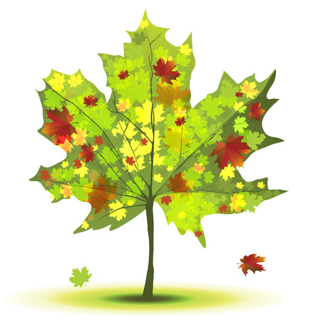 Decorative maple tree in green and red colours