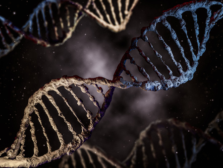 hereditary: Digital illustration of a DNA model. 3D rendering