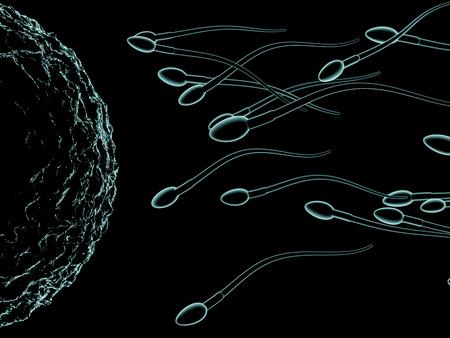 Spermatozoïdes et ovules vue microscopique . rendu 3d Banque d'images - 86945029