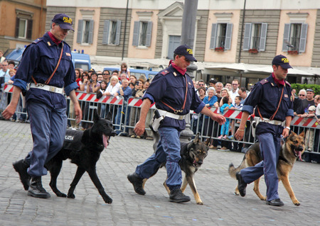 Rome, Italy - May 17, 2008: Three men of the police department dog lovers perform in an exercise to the streets with their dogs, during the celebrations of the 156th anniversary of the birth of the Italian State Police. Editöryel