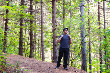 A man crosses the path in the forest of wild pines. Hiking clothing, cap with visor and backpack.