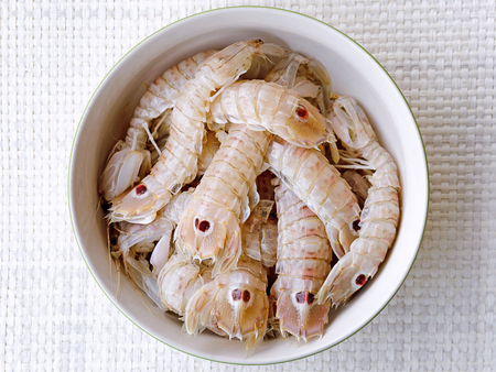 Plate full of sea cicada. Raw sea food, preparation before cooking