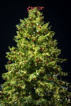 Wonderful Christmas tree decorated with lights and Christmas balls. Black background. Stok Fotoğraf