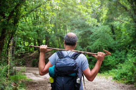 The man walks on the path in the woods, carrying his trekking stick on his shoulders. All around the rich surrounding vegetation with the green of the plants and trees of the natural environment.