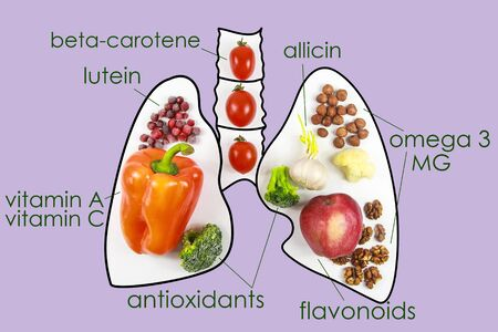 Food for lung health. Nutrients, vitamins, antioxidants Banque d'images - 131911282