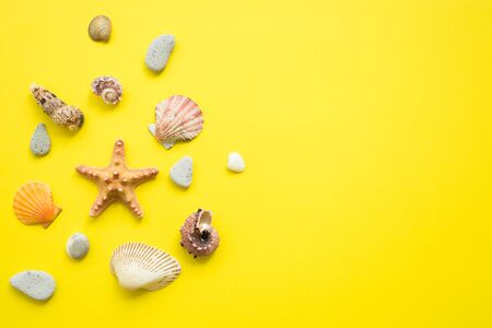 Summer vacation composition idea, seashells on blue and yellow background, flat lay and top view photo