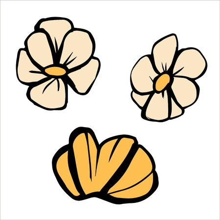 Yellow flower set vector illustration. Vector sketch. Hand drawn Isolated simple flowers on white background. Black outline. 向量圖像