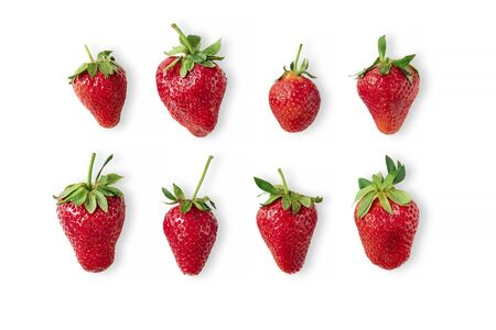 Eight big ripe red strawberries laying on isolated white background. Healthy eating and vegan raw food concept