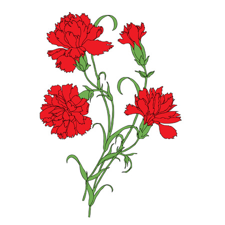Elegancia sin fisuras patrón con flores de clavel, ilustración vectorial floral en estilo vintage
