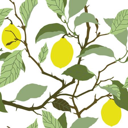 lemon tree: Elegance Seamless pattern with lemon tree ornament, vector floral illustration in vintage style
