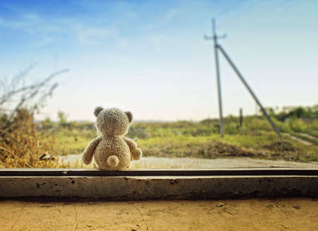 vintage teddy bears: Little Bear su una finestra Archivio Fotografico