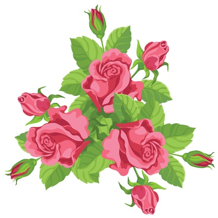 rosebush: hand drawing illustration of a funny bouquet of roses Illustration