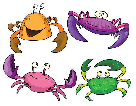 crabs: An illustration of a funny crabs Illustration