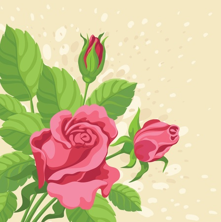 hand drawing illustration of a roses background Vector