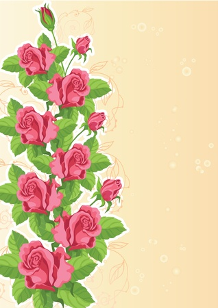 illustration of a rose funny card Vector