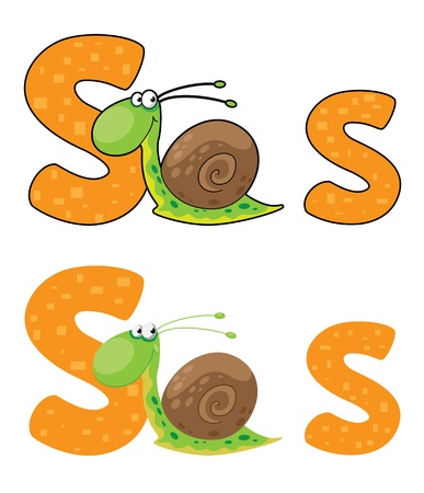 illustration of a letter S snail