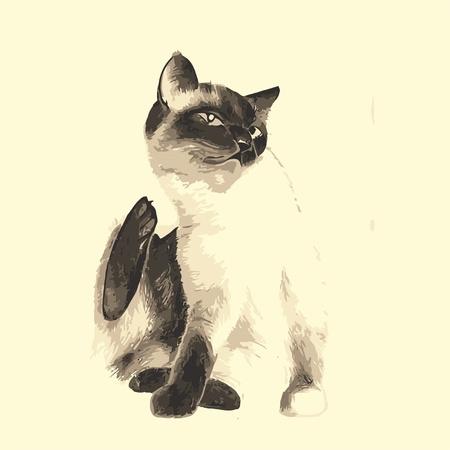Cat Stock Vector - 13885922