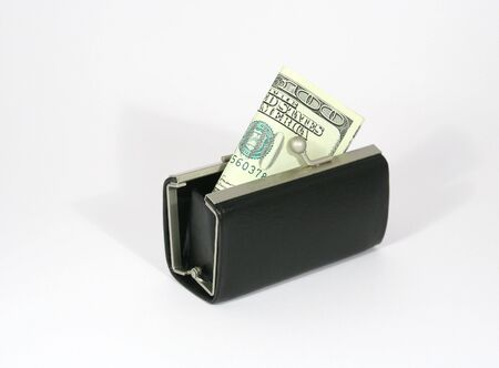 purse with 100 dollars banknote photo