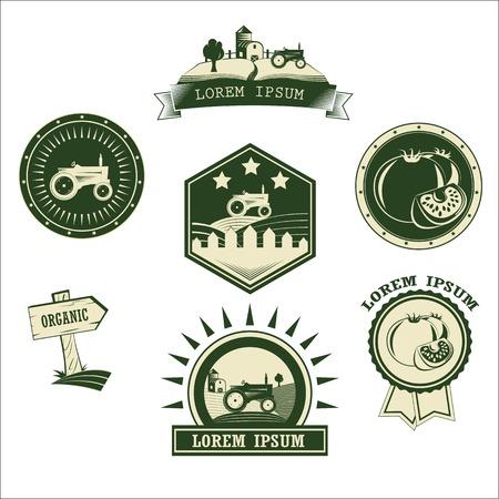 Set of retro vintage farm fresh labels, badges and design elements