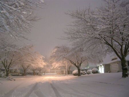 Snowy night, White Rock BC Stock Photo - 7795389