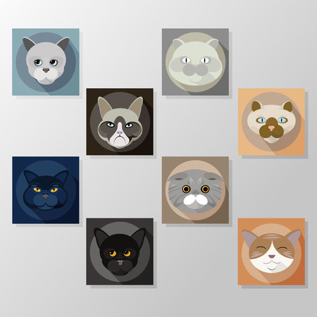 Cats flat icons set, illustration vector characters.