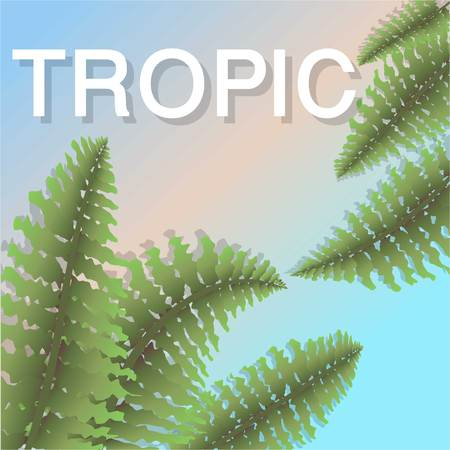 Tropic mood poster Template
