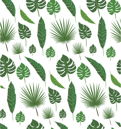 Palm leafs seamless pattern set for decoration , for design print and web , nature exotic elements