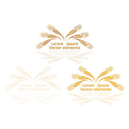 Wheat ears, oats or barley three vector    logotypes set golden on white background. Eco natural ingredient element, healthy food or agriculture, bread realistic for web and print, 3d decoration