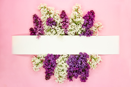 Festive invitation or greeting card with beautiful floral border. Violet and white syringa flowers on light pink background. Copy space. Top view. Standard-Bild