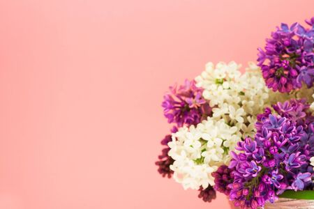 Romantic summer background with purple and white lilacs on pink and place for text