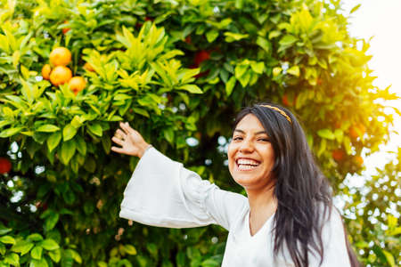 Latin brunette woman laughing dressed in white stretching her arm to touch some oranges in the tree. happiness concept