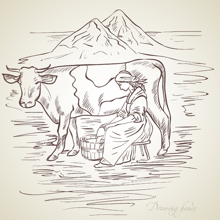 milk pail: vector, drawing, the girl milks a cow Illustration