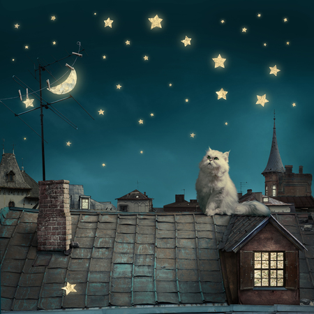 surreal fairy tale art background, cat on roof, night sky with moon and stars, copy space,
