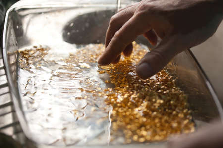 closeup picture of ingots of yellow melt gold washing in water with hands after melting work