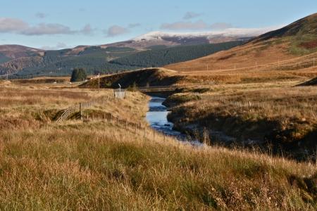 moorland: Moorland river in autumn