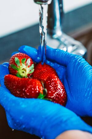 Hands with blue latex gloves disinfecting strawberries to decontaminate the fruit from viruses. Washing the fruit with water and lye. 스톡 콘텐츠