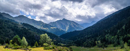 Beautiful mountainous landscape in an alpine valley with trees and green mountains. Outdoor summer vacation, nature and mountaineering concept. Pyrenees, Catalonia, Spain. 免版税图像
