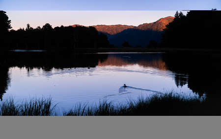 Beautiful sunrise or sunset on an alpine lake with the silhouette of some ducks in the Pyrenees, Catalonia, Spain. Concept of vacations, summer, relaxation and disconnection in nature. Wilderness. 免版税图像