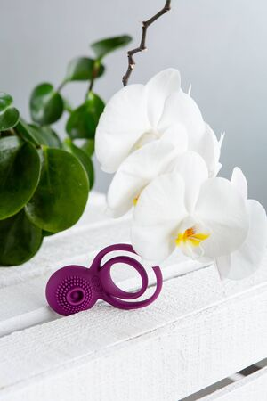 Purple erection ring with vibration function. Sex toys for adults, on white wooden boards against the background of blooming white orchids and green leaves. Sex shop concept with space for text Banco de Imagens