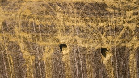 beveled wheat field aerial photography with drone