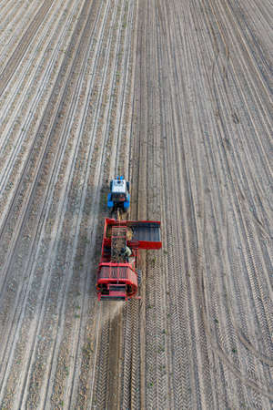 The potato harvester goes through the field. Aerial view.