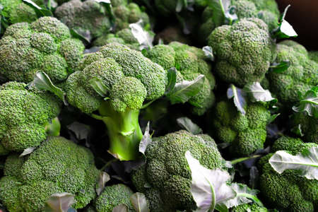 background of lots of fresh broccoli.