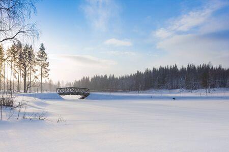 comfy: Beautiful winter landscape in Finland. Tahko resort; January 2009